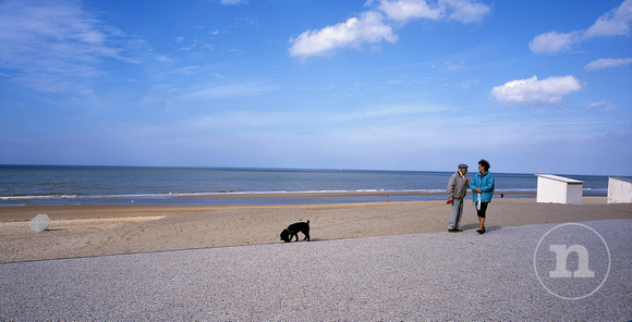 Belgian dog owners in Coxyde